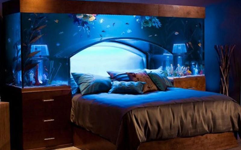 space theme aquarium bed