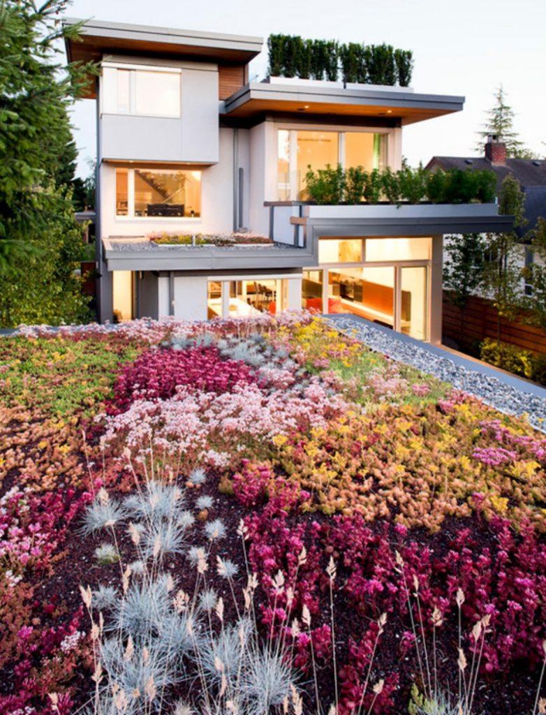 rooftop garden eco home